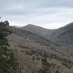 Schell Creek1